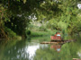 Bamboo River Rafting from Negril