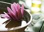 After Sun Treatment